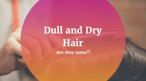 dull and dry hair